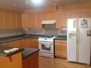 House for rent in south Windsor