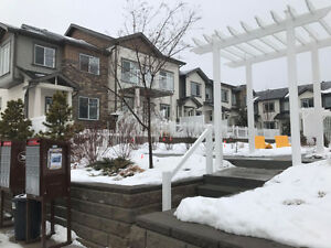 Modern 1300 sqft townhouse with 3 bedrooms and 2.5 bathrooms