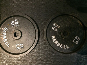 Two Olympic 45lb weight plates