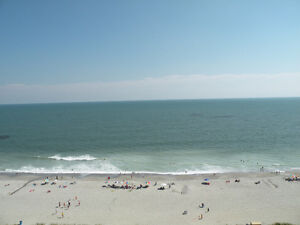 12th Floor very clean Ocean Front 1 Bdrm Condo