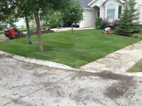 "Landscaping, Mini 42"" walk behind skid steer & 2 yard loader"
