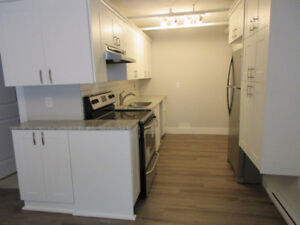 Brand new junior 2 BR by lake, granite, stainless, large deck