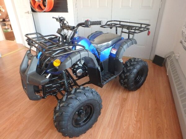 Used 2015 Taotao GRIZZLY