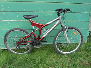 Raleigh 21 speed