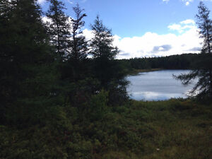 Commercial Land for Sale in Bay Roberts on Beaver Pond!!! St. John's Newfoundland image 5