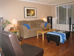 Beautiful House for Young Professional or Mature Student Kitchener / Waterloo Kitchener Area image 4