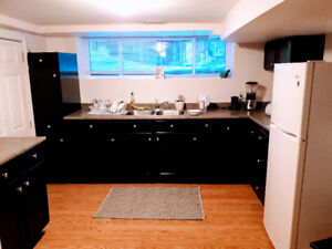 1BR Apartment Furnished Utilities Included