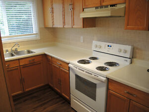 Bradford Newly Renovated 2 BR Apt *No longer Avail See other ad*