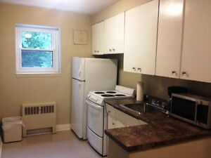 Fully Furnished Exec 1 Bdrm * Close to Dwtn * All Inclusive London Ontario image 3