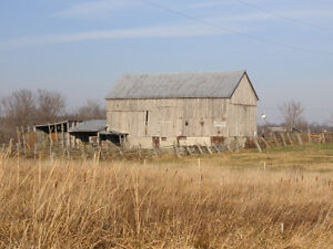 Farm for Sale by Auction Kawartha Lakes Peterborough Area image 4