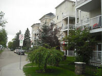 2 beds, 2 baths, top floor, CA, fireplace, immaculate condition.
