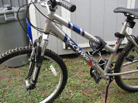 LADIES MOUNTAIN BIKE- SCHWIN MODEL 210-FS