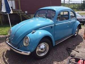 1963 beetle bug 4 speed standard restored ready to ride