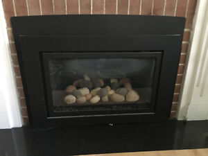 Fireplace insert - 2.5 years old