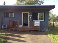 1 bedroom house/cabin