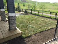 Spring Sod Installations, Now Booking!!!!