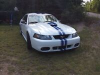 2003 Ford Mustang cuir beige Coupé (2 portes)