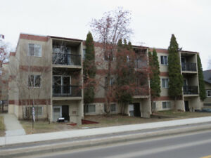 Large 3 Bedroom Condo Close to the U of A