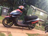 125cc pioneer moped
