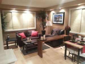 Fully furnished executive 1 bedroom Condo in Downtown Edmonton.