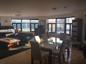 Luminous and Spacious Loft in Great Location