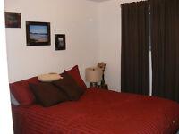 3-bedroom Professional Modern Pet Friendly Upper Duplex