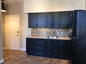 ***A Must See*** 1 Bedroom Apartment in Trent Hills