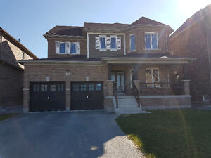 FABULOUS LARGE HOME AVAILABLE FOR LEASE IN LEFROY!