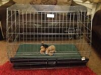 Dog cage for a car