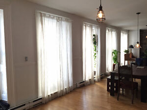 large 1 bedroom/ loft style in Old Montreal. July