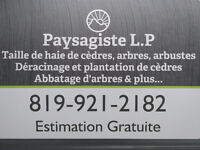Paysagiste L.P Hedge trimming, shrubs, Trees and more...