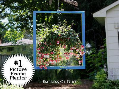 Ein Blumentopf im Bilderrahmen