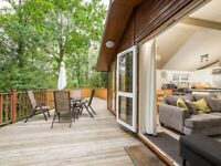 Wessex Classic Lodge for Sale Finlake Holiday Park