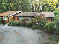 Beautiful spacious logwood house (Edgemont Pemberton Heights)