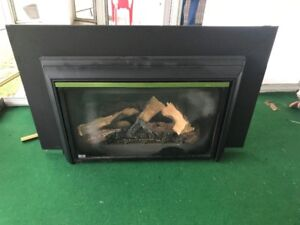 Propane fireplace insert for sale with 30' liner
