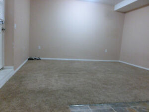 Basement for rent in skyview ranch