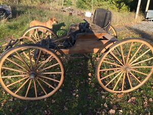 doctor horse buggy