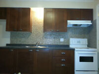 Large 2 Bedroom apartment for Rent Available for June 1/ 2015