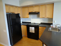 Furnished Condo in Dalhousie St (Downtown ) AVAIL January 1st!!!