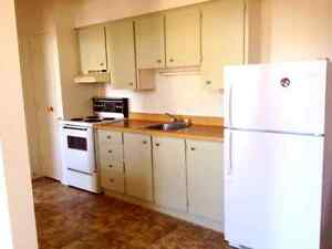 Warkworth ON: Bright One Bedroom Apartment for Rent  Peterborough Peterborough Area image 2