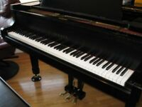 Piano & Theory Lessons - St Albert