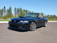 2003 Ford Mustang GT $10000 or trade towards a pontoon boat