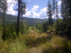 2.5 acres with well close to Moyie Lake