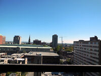 Great 3.5 apartment in the Downtown of Montreal