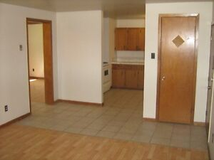 Nice apartment. Great value. Perfect RIVERVEIW location!