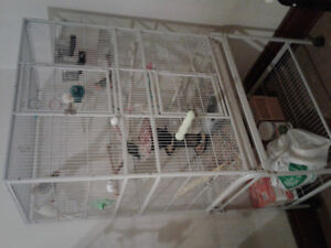 Love Birds cages with stands for sale