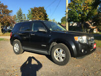 2008 Ford Escape XLT SUV, Crossover Kitchener / Waterloo Kitchener Area Preview