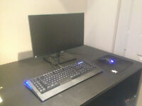 Custom Gaming PC [Machine, écran, clavier, souris et headset]