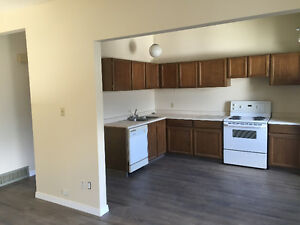 Two bedroom townhouse for rent at 14912-56 Avenue Riverbend