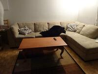 chambre berri uqam meublée debut mars